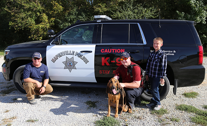 Naperville Police Department Bloodhound Team Find Hit and Run Suspect.