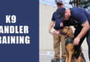 Professional K9 Handler Training